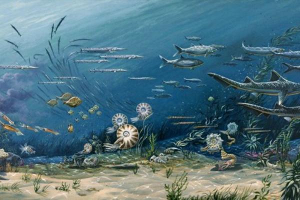 mesozoic marine ecosystem 720