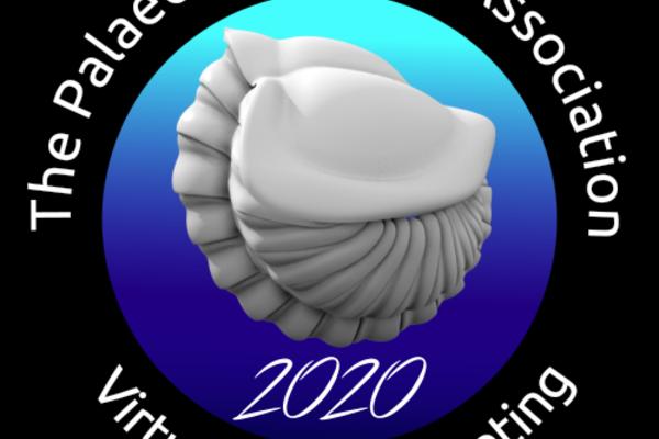 palass 20 logo